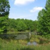 285_Fairview Pond - resize (2)_large