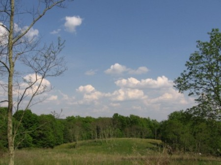 222_Tract A - Homeplace (5)_large
