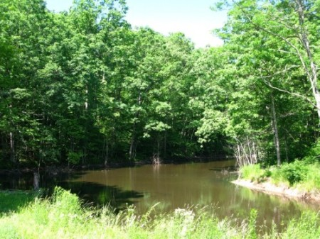 258_Kemper -25 Acres - Resize  11_large 12