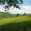 274_Stony Creek Mtn - W02_large 2