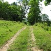 274_Stony Creek Mtn - W07_large