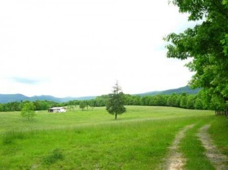 281_Orchard Hill Farm - Resize 01_large