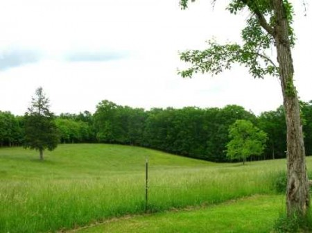 281_Orchard Hill Farm - Resize 30_large 17