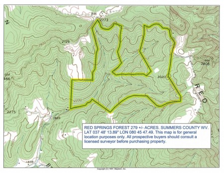 305_Red Springs Forest - Topo Map_orig