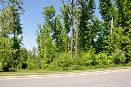 03 GREENBRIER PINES LOT 9 TOUR RESIZE
