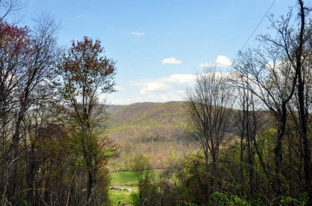 624 Chestnut Mountain Road 024