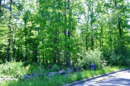 GREENBRIER PINES LOT 15A TOUR RESIZE (14)