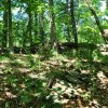 GREENBRIER PINES LOT 15A TOUR RESIZE (9)
