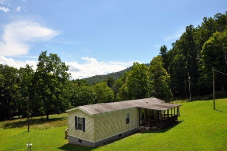 griffith-creek-forest-tour-052