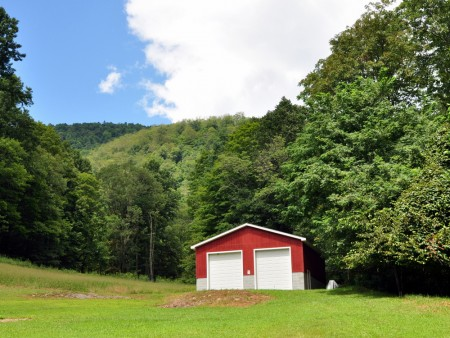griffith-creek-forest-tour-053