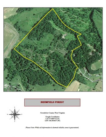 Brumfield Forest Google Earth map