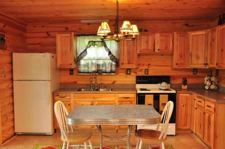 Kitty's Cabin on the Greenbrier 015