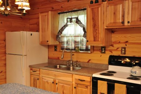 Kitty's Cabin on the Greenbrier 017