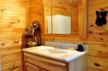 Kitty's Cabin on the Greenbrier 033
