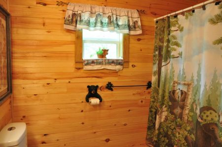 Kitty's Cabin on the Greenbrier 035
