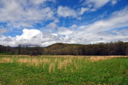 Otter Creek Farm and Forest Tour 001