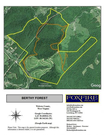 Berthy Forest 002