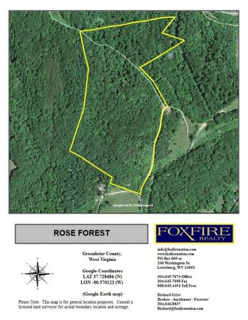 Rose ForestTour 003