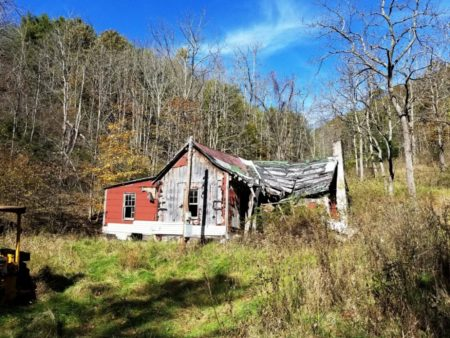 Big Buck Forest and Homeplace 017