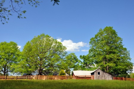 46-COCHRAN HOMEPLACE-045