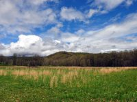 OTTER CREEK FARM AND FOREST