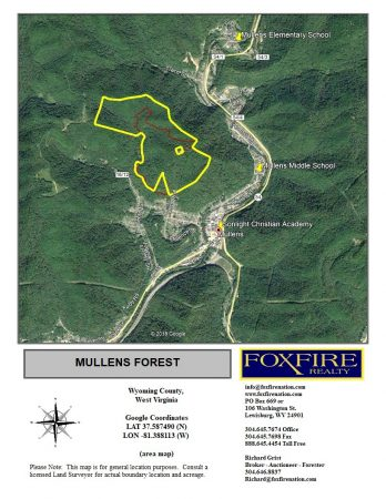 Mullens Forest 035