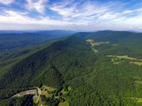 NINE SPRINGS FARM - 352 ACRES +/- <BR>Craig County, Virginia